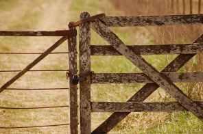 barn blur close up countryside